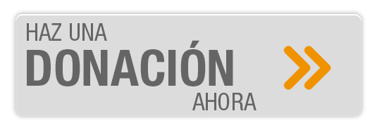 boto_donacio_ara2
